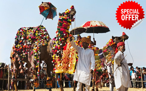 Discover India Pushkar Animal Fair Tours